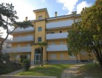 CK Ludor - Apartament TINTORETTO